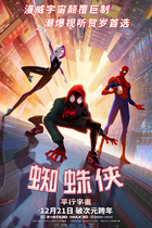 蜘蛛侠:平行宇宙/Spider-Man: Into the Spider-Verse (2018)